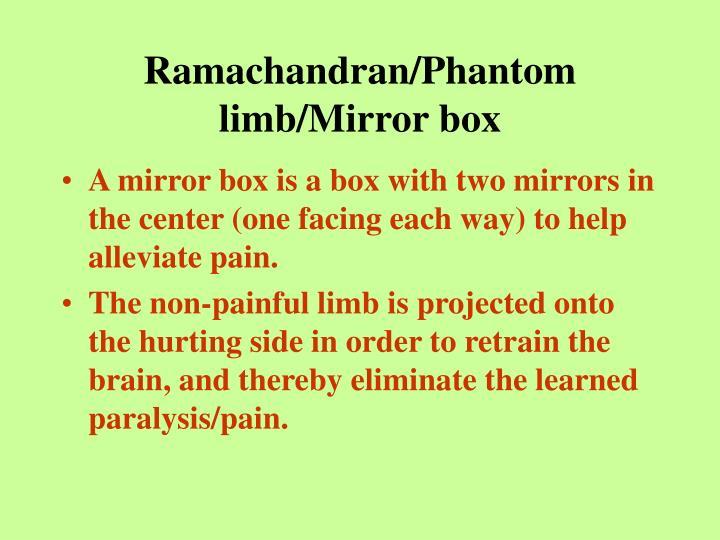 Ramachandran/Phantom limb/Mirror box