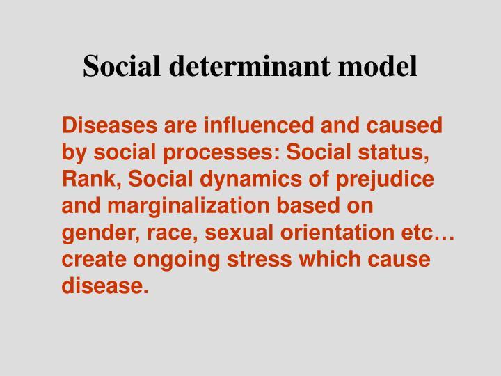 Social determinant model
