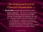 developmental level of character organization cont1