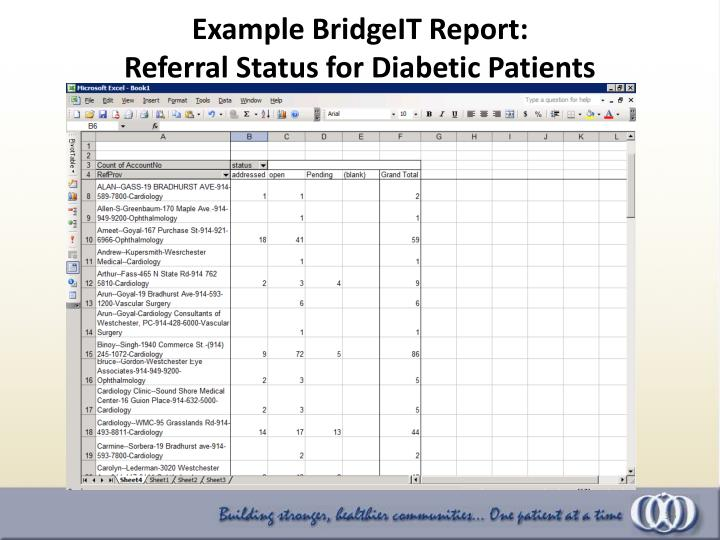 Example BridgeIT Report: