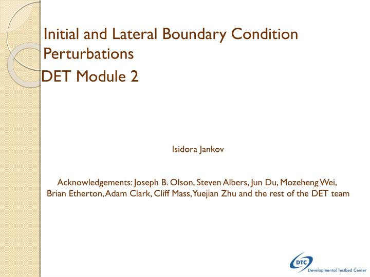 Initial and Lateral Boundary Condition Perturbations