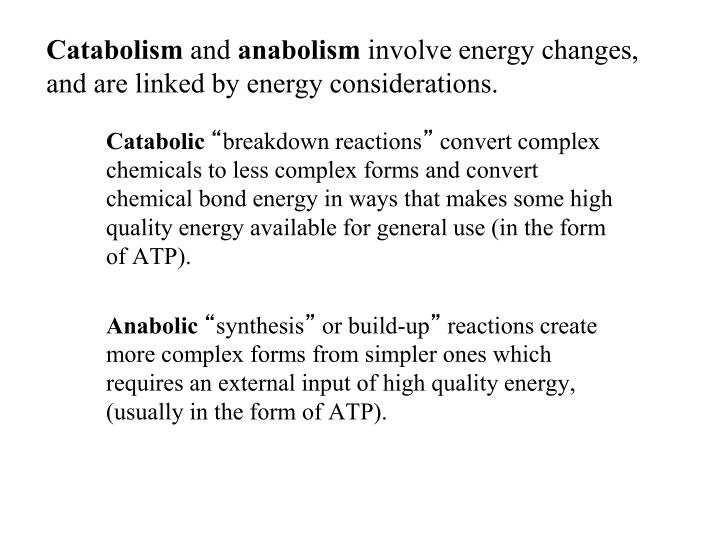 Catabolism and anabolism involve energy changes and are linked by energy considerations