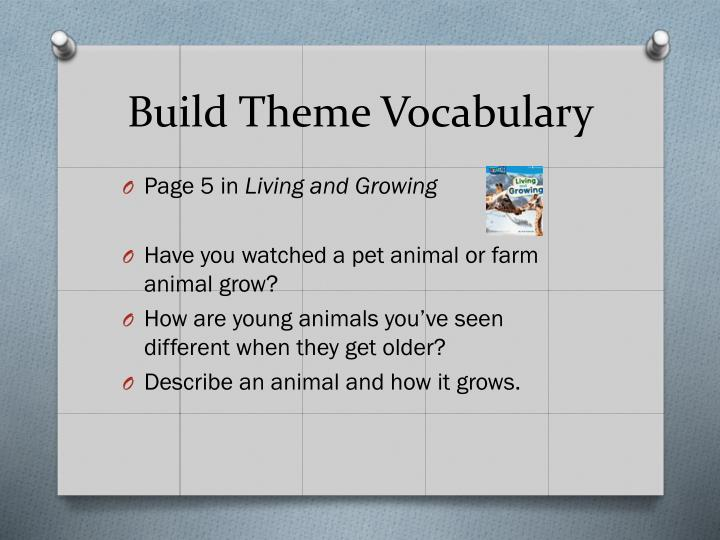 Build Theme Vocabulary