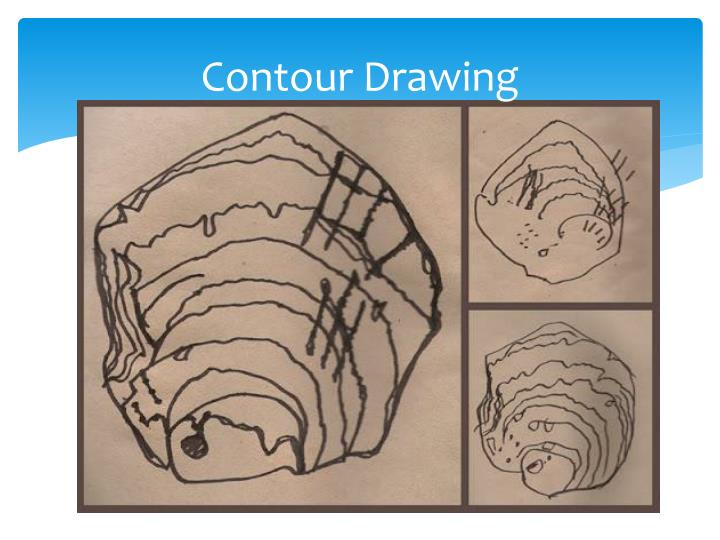 Contour Line Drawing Powerpoint : Ppt seaside fun by celia warren powerpoint presentation