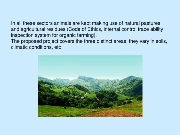 In all these sectors animals are kept making use of natural pastures