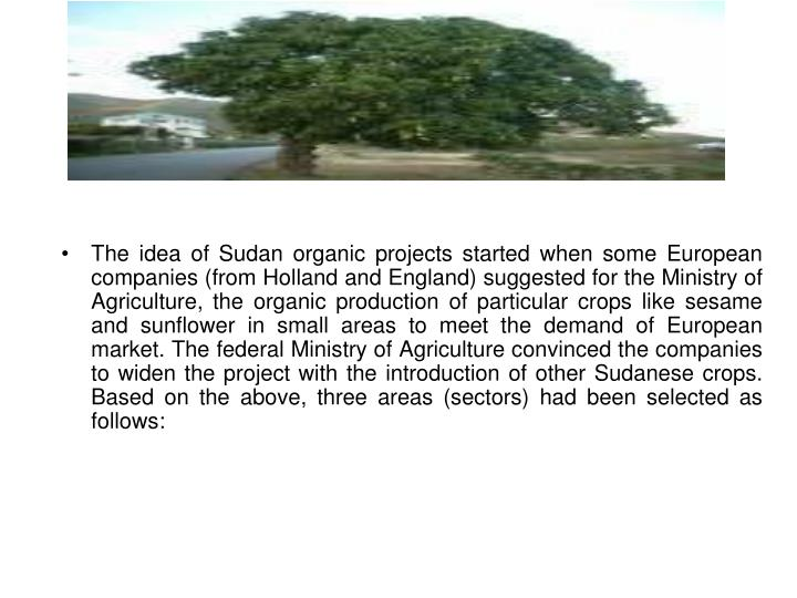 The idea of Sudan organic projects started when some European companies (from Holland and England) s...