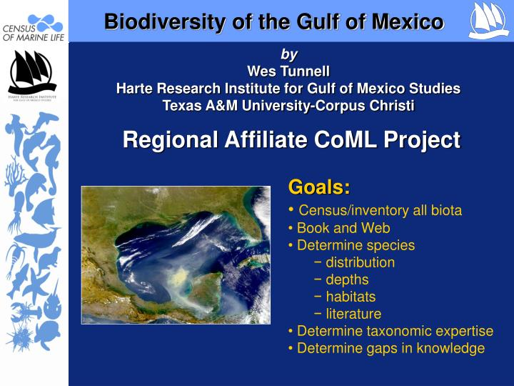 Biodiversity of the gulf of mexico