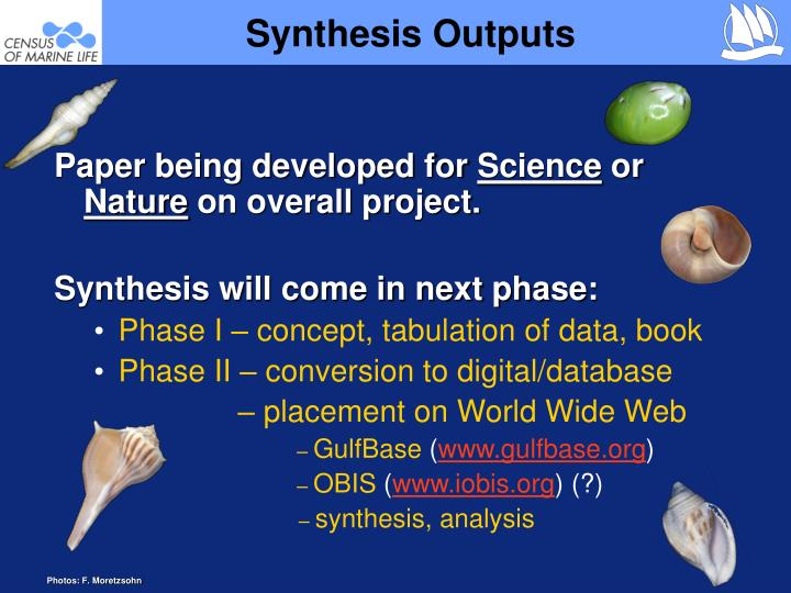 Synthesis Outputs