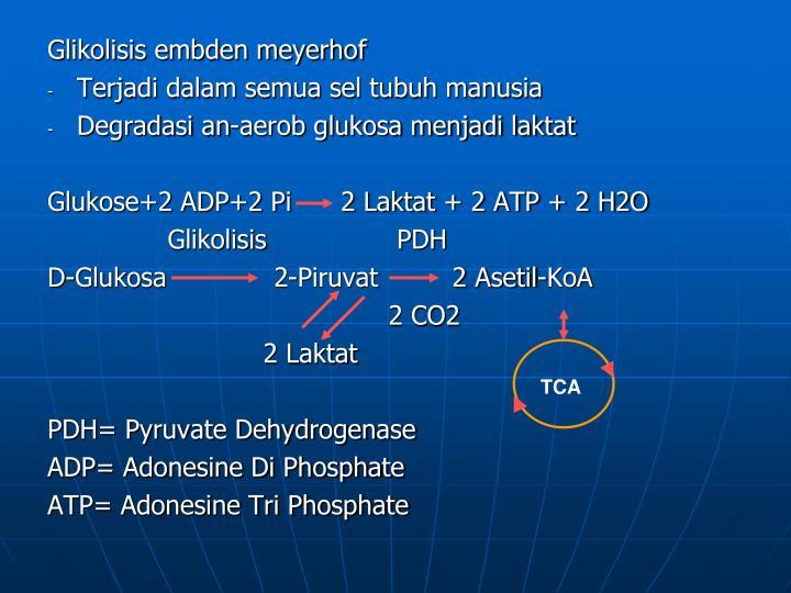 Glikolisis embden meyerhof