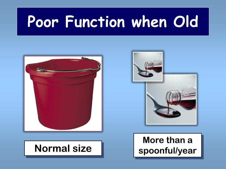 Poor Function when Old