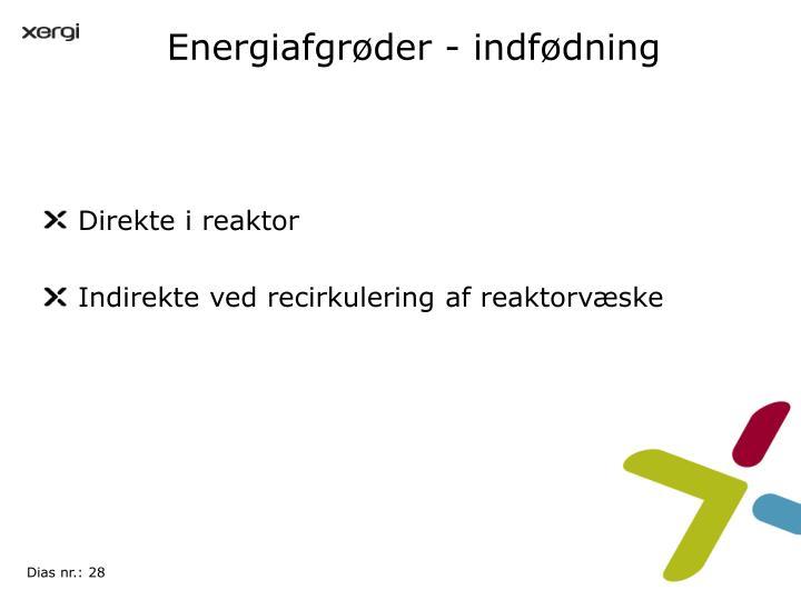 Energiafgrøder - indfødning