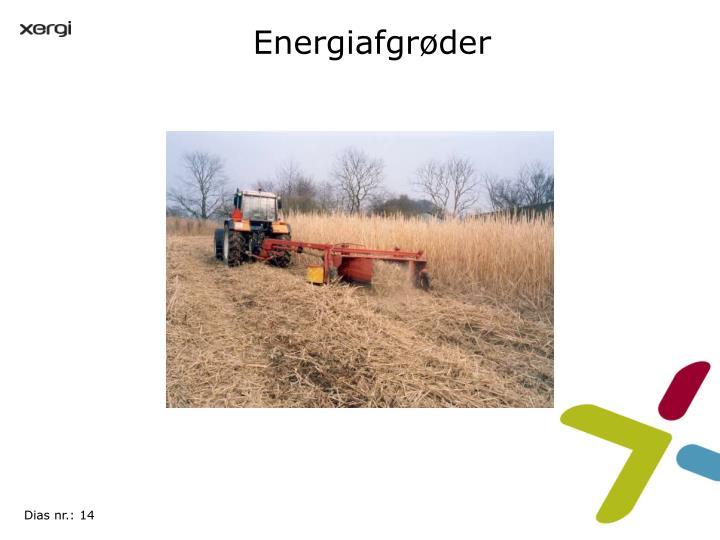 Energiafgrøder