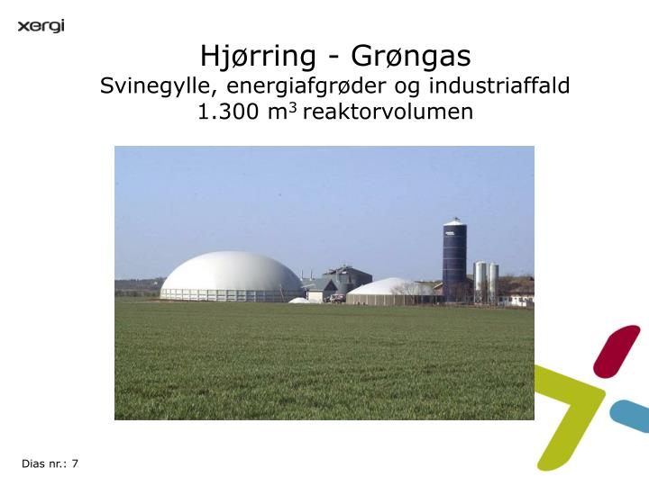 Hjørring - Grøngas