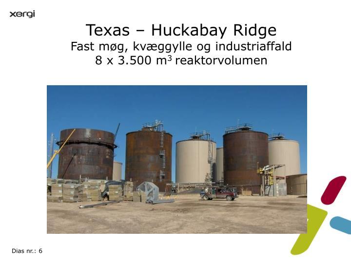 Texas – Huckabay Ridge
