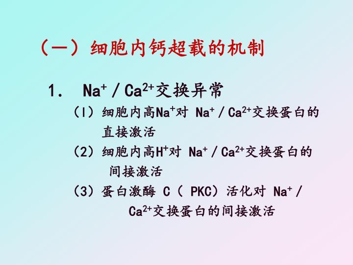 (-)细胞内钙超载的机制