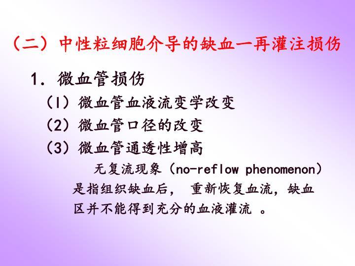 (二)中性粒细胞介导的缺血一再灌注损伤