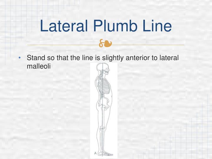 Lateral plumb line