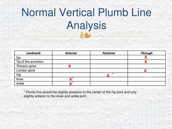 Normal Vertical Plumb Line Analysis
