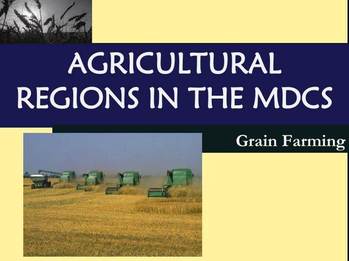 Grain Farming