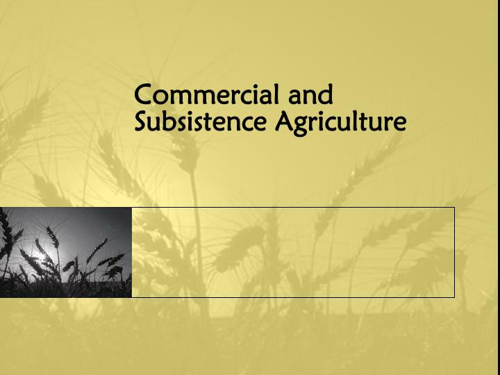 Commercial and Subsistence Agriculture