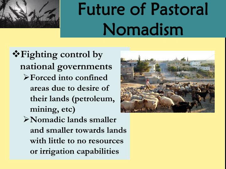 Future of Pastoral