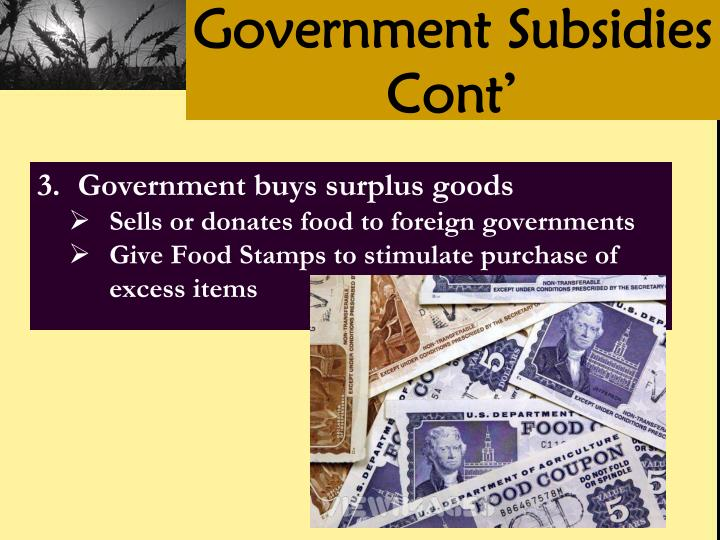 Government Subsidies Cont'