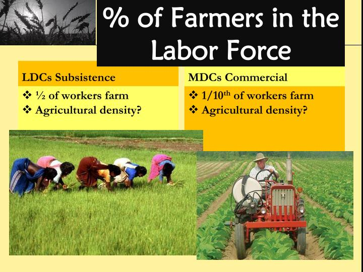 % of Farmers in the Labor Force