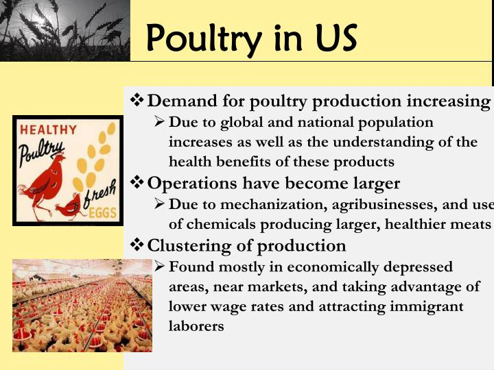 Poultry in US