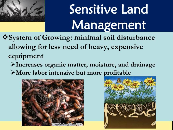 Sensitive Land Management
