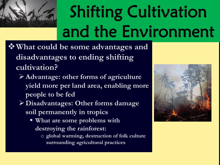 Shifting Cultivation and the Environment