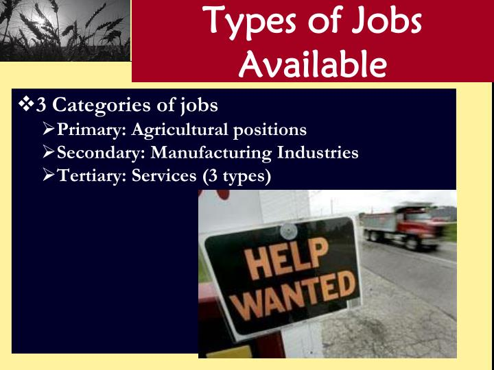 Types of Jobs Available