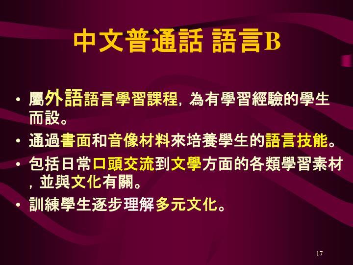 中文普通話 語言