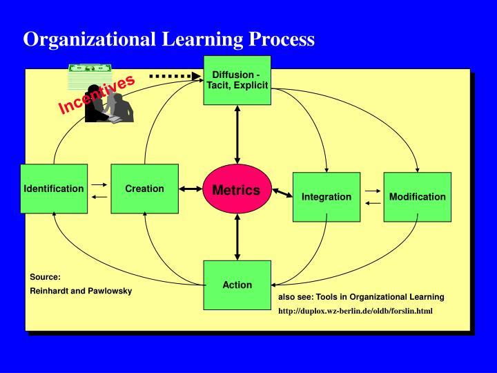 Organizational Learning Process