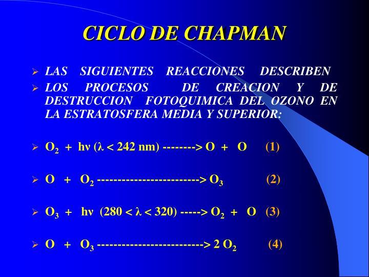 CICLO DE CHAPMAN