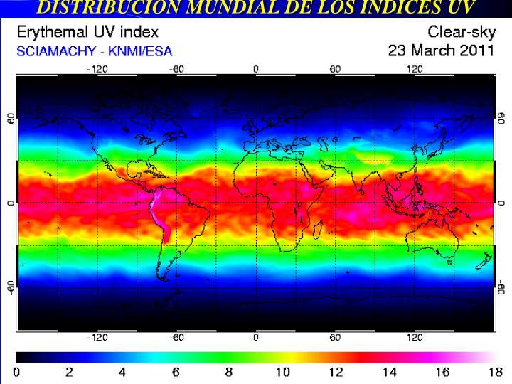 DISTRIBUCIÓN MUNDIAL DE LOS ÍNDICES UV