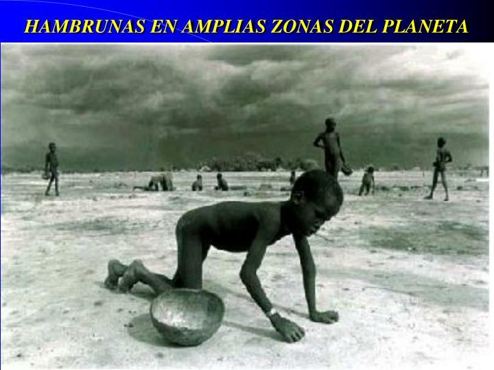 HAMBRUNAS EN AMPLIAS ZONAS DEL PLANETA