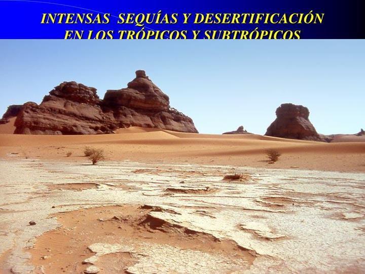 INTENSAS  SEQUÍAS Y DESERTIFICACIÓN EN LOS TRÓPICOS Y SUBTRÓPICOS