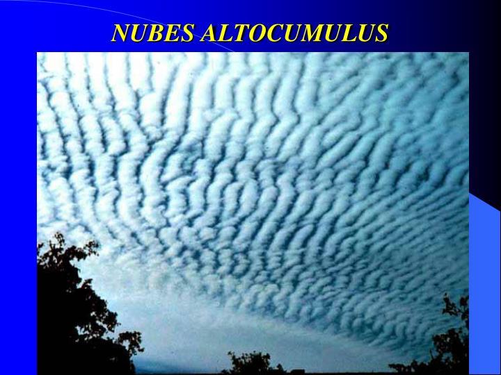 NUBES ALTOCUMULUS