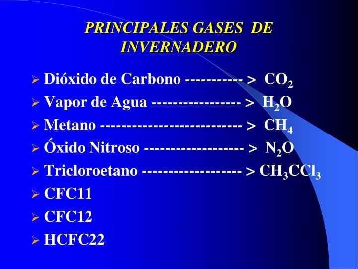 PRINCIPALES GASES  DE INVERNADERO