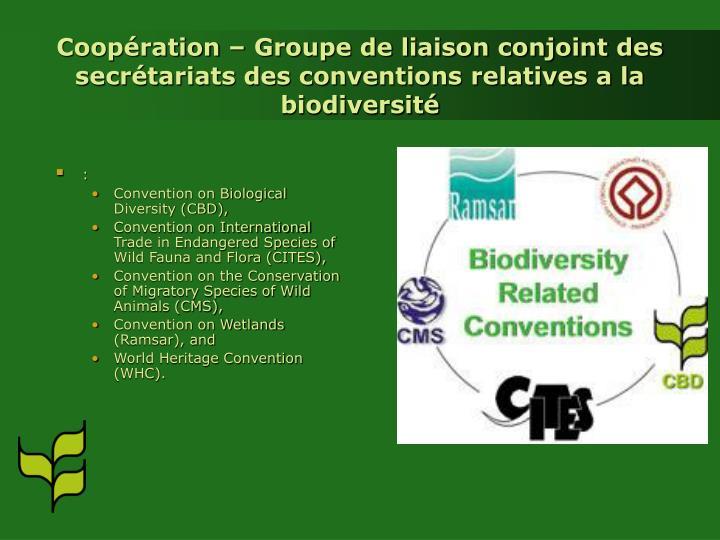 Coopération – Groupe de liaison conjoint des secrétariats des conventions relatives a la biodiversité