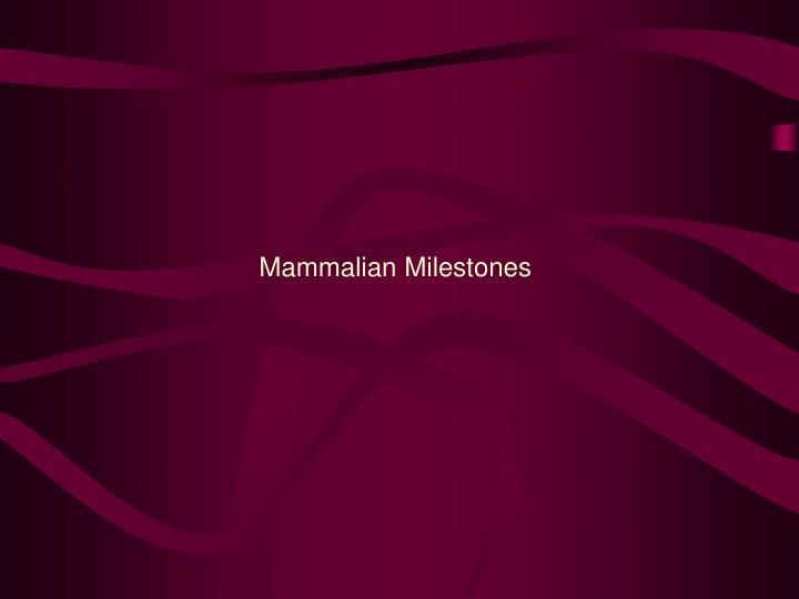 Mammalian Milestones