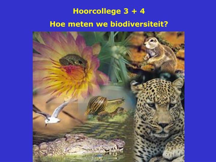 Hoorcollege 3 + 4