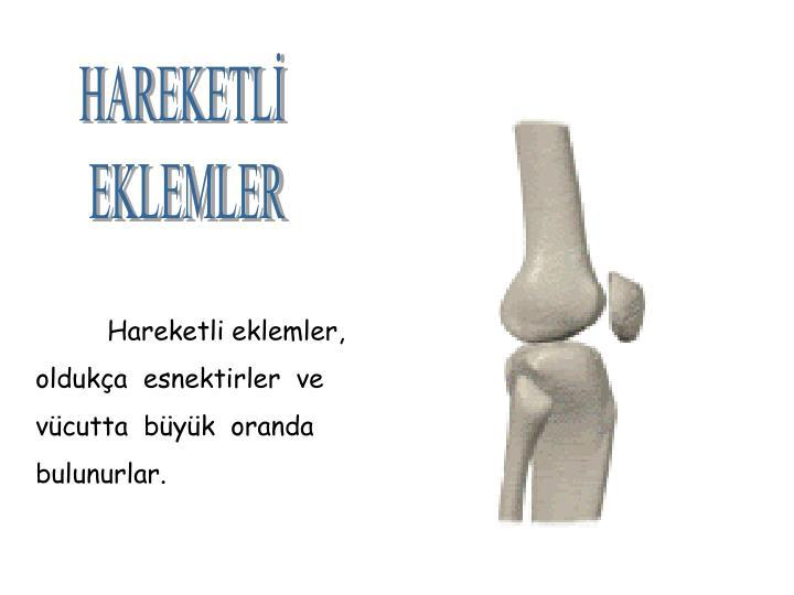 HAREKETLİ