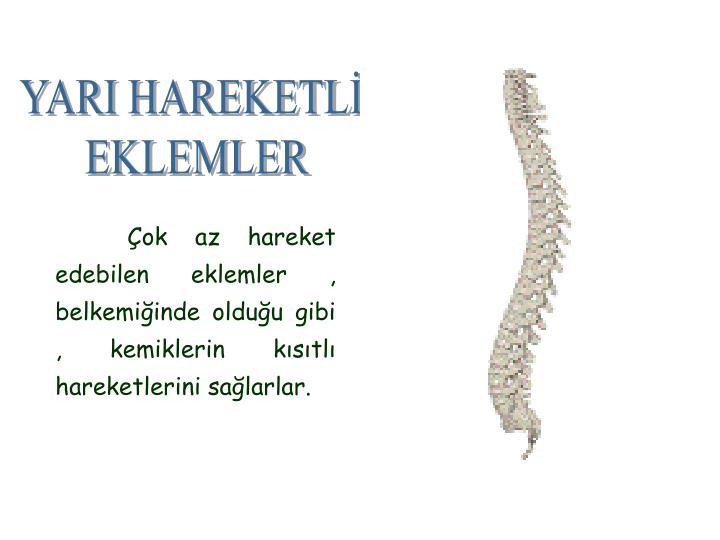 YARI HAREKETLİ