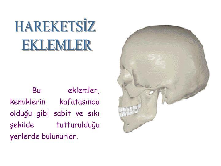 HAREKETSİZ