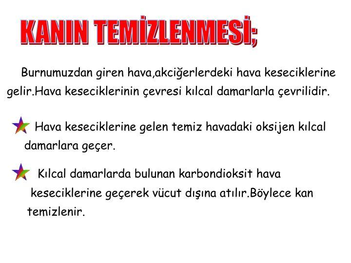 KANIN TEMİZLENMESİ;