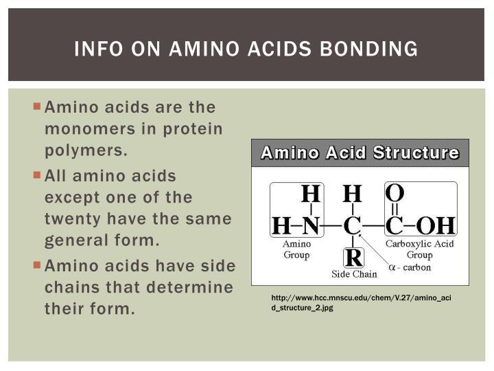 Info on Amino Acids Bonding