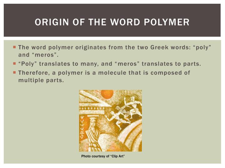 Origin of the word polymer