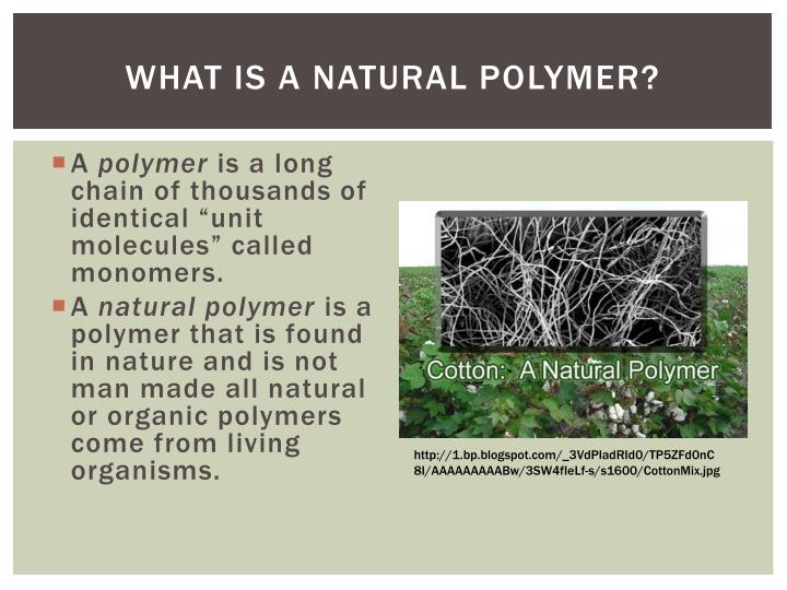 What is a Natural Polymer?
