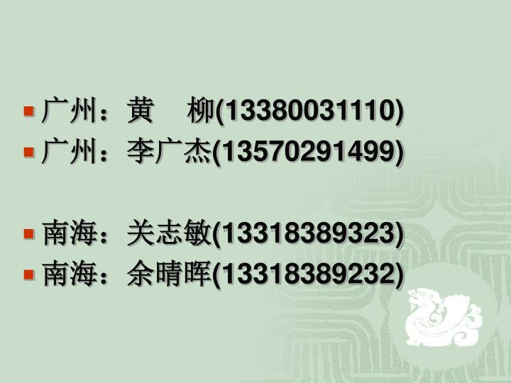 广州:黄    柳